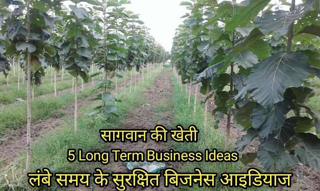 5 long term business ideas in hindi